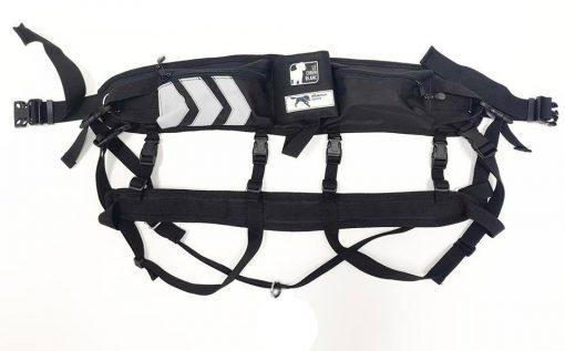 canicross cani rando cani fitness rando canine sport dog traction hiking belt