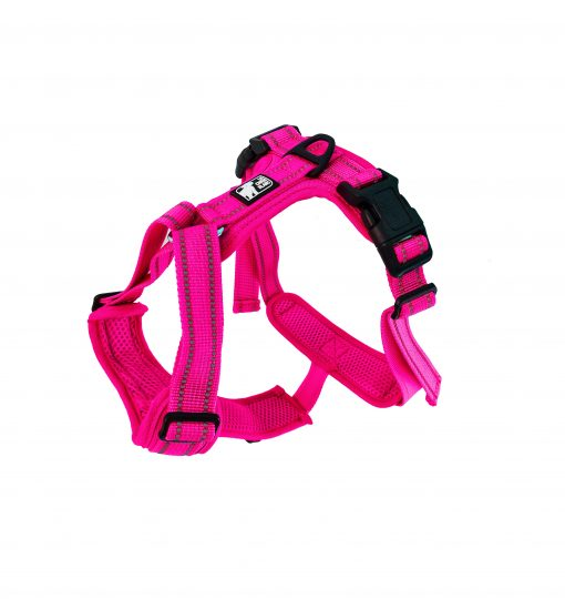 le chien blanc harness pink