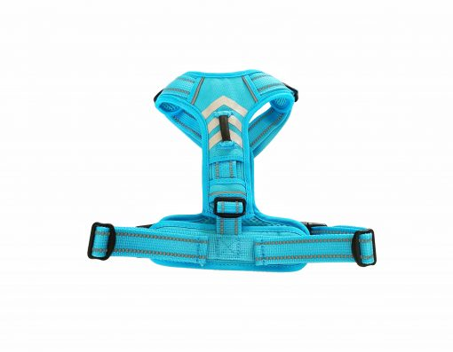 front attach harness blue