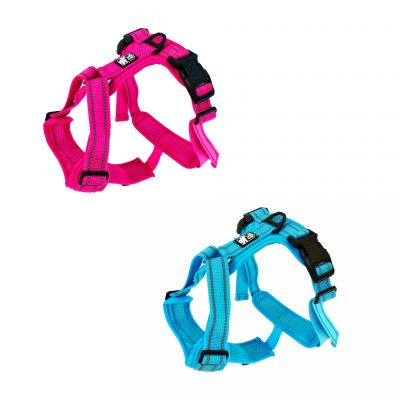 all day harness pink blue