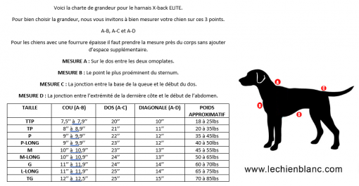 HOW TO PICK THE RIGHT SIZE XBACK DOG HARNESS CANICROSS