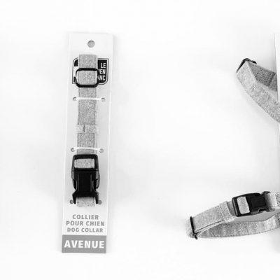 collection collier harnais laisse pour chien urbain avenue